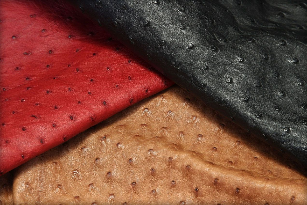 Ostrich leathers